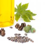 castor oil my $10 lash growth solution